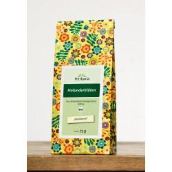 Holunderblüten Tee kbA*